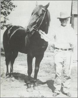 photo of Joe Hancock - horse and owner
