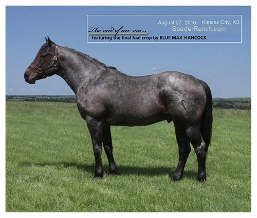 Spader Ranch sale Aug 2016