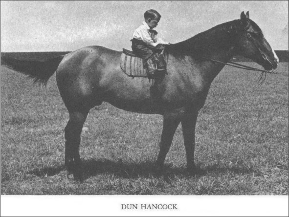 photo of Dun Hancock