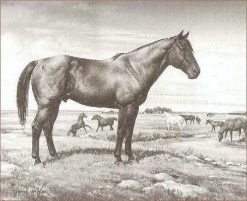 running horse logo